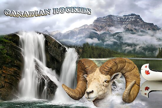 Postcard from Canadian Rockies by Teresa Zieba