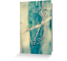 Sinuous Greeting Card