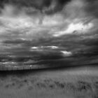 Rolling Prairie Sky by Jamie  Palmer