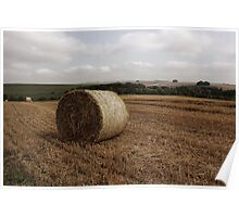 Hay Bale Poster