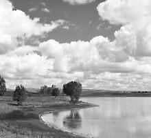 Lakeside by Nikki Collier