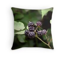 The Fruits of Summer Throw Pillow