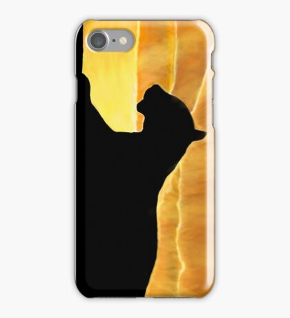 Sunset Lion iPhone Case/Skin