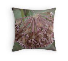 (Aug.) Magnificent Milkweed Throw Pillow