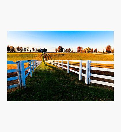 Kentucky Thoroughbred Horse Farm Photographic Print
