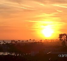Sunset Over Balboa Pier (Newport Beach, CA, USA) by vmculp