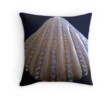 Small Jewel box in Czech Crystals & fine Gold Chain Throw Pillow