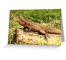 water dragon on dry land Greeting Card