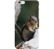 Friendly Chipmunk iPhone Case/Skin