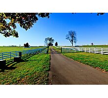 Kentucky Thoroughbred Horse Farm Photographic Print