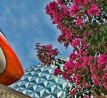 Summer Days at Epcot by jjacobs2286