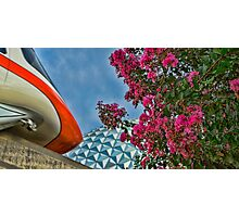 Summer Days at Epcot Photographic Print