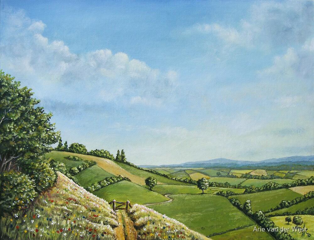 Hillside Delight by Arie van der Wijst