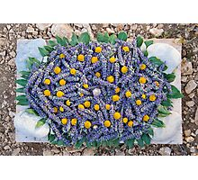 Lavender Art Photographic Print
