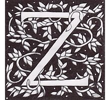 "Art Nouveau ""Z"" (William Morris Inspired) Photographic Print"