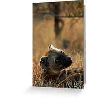 Kruger National Park, South Africa. 2009  V Greeting Card