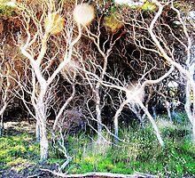 tree sprites by donnammalone
