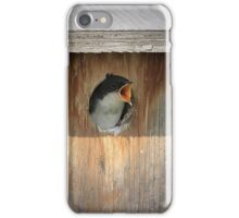 Baby Tree Swallow iPhone Case/Skin