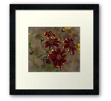 All The Flowers Framed Print