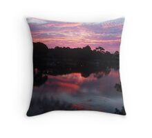 RED ripples.... Throw Pillow