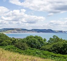 Southwest Coastal Path Above Lyme Regis 3 - July by Susie Peek