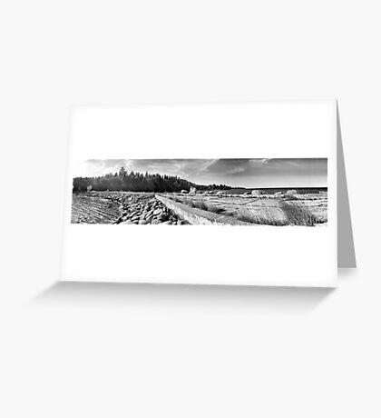 Hara bay panorama. Greeting Card