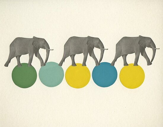 Travelling Elephants by Cassia Beck