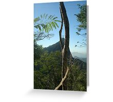 Christ through framed tree bark Greeting Card