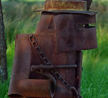 NED KELLY SIDE VIEW by Helen Akerstrom Photography