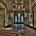 Insane Asylum by Scott Carr