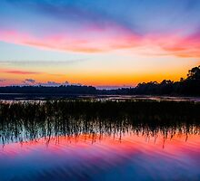 A Palette of Colors by Parker Cunningham