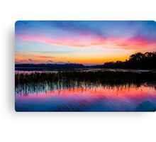 A Palette of Colors Canvas Print