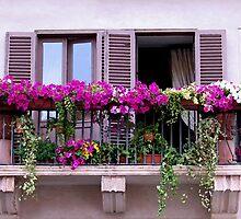 Roman Balcony by hjaynefoster