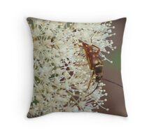 A beetle bug Throw Pillow