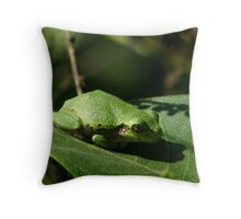Just A Wee Frog Throw Pillow