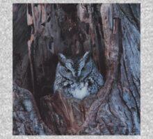 Little Screech Owl Grey Phase Kids Tee