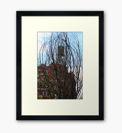Untitled - WT 11 Framed Print
