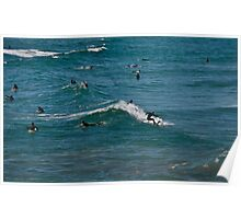 """"""" Catch a wave """" Poster"""