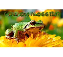 FABULOUS FROGGIES Photographic Print