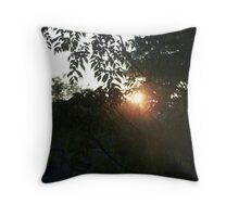 Sun Set Valley Throw Pillow