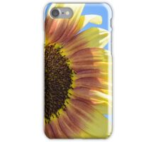 Sunflower close up iPhone Case/Skin