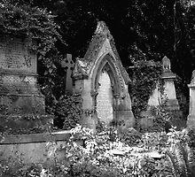 Highgate Cemetery (West) by Alan Keegan