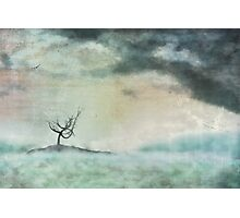 The island of solitude Photographic Print