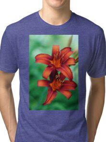Tawny Beauty Tri-blend T-Shirt