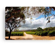 Storm across the vineyard Canvas Print