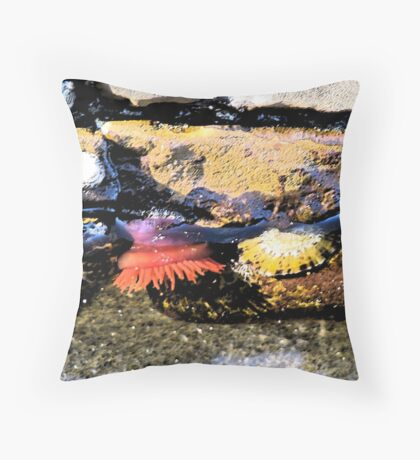 Rockpool at Lorne Beach Throw Pillow