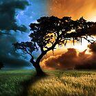 Sunrise till sunset by brandiejenkins