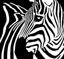 Zebra Fusion by Janet Fikar