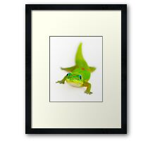 Say cheese!  (Smiling gecko) Framed Print