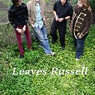 Leaves Russell In The Ivy by Benjamin Kaufman
